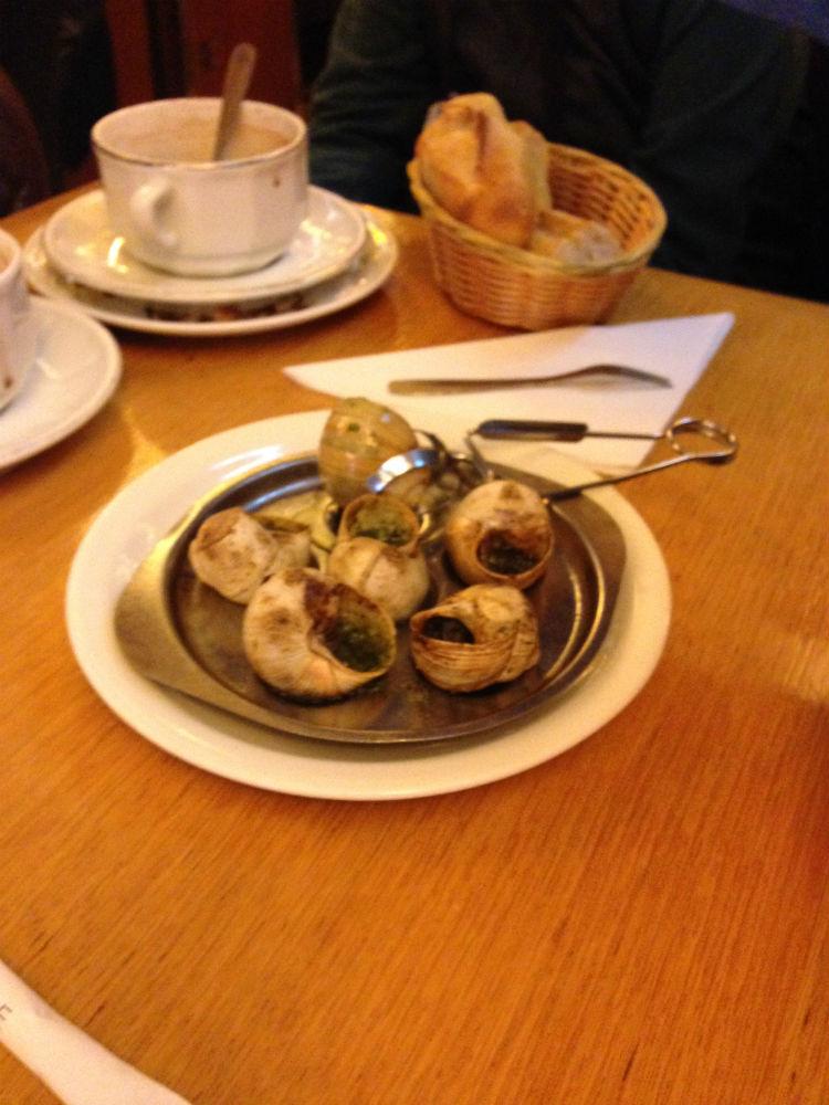 europe-snails