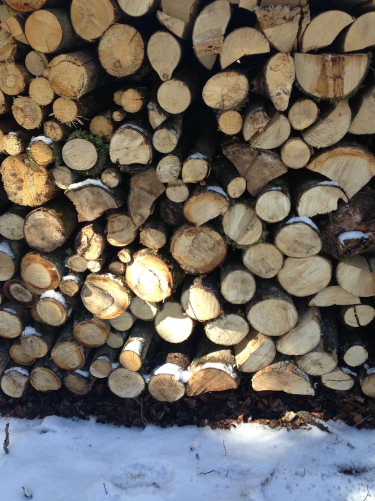 europe-wood