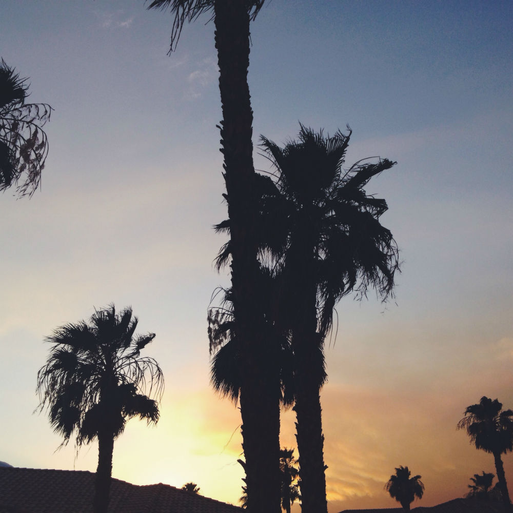 Sunsets and palm trees are a great combo.
